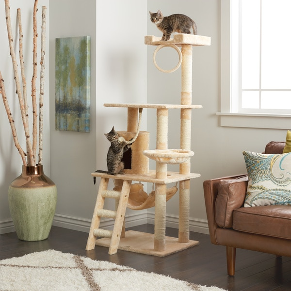 Pet Home A Collection By Anglina Favorave